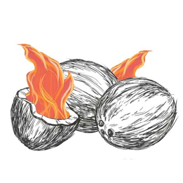 Briquettes de charbon de noix de coco - Briquette de charbon ...